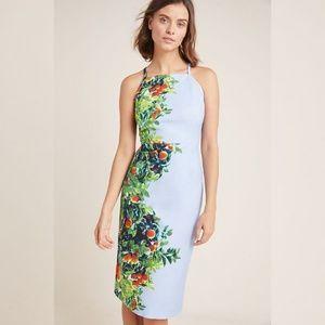 MAVE Anthropologie Orange Bough Dress Size 14